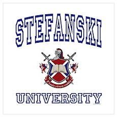 STEFANSKI University Wall Art Poster