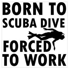 Born to Scuba Dive Wall Art Poster