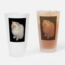 Zeus the White Himalayan Cat Drinking Glass
