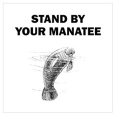 Stand By Your Manatee Wall Art Poster