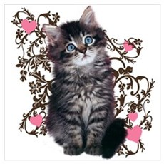Cute Blue-eyed Tabby Cat Wall Art Framed Print