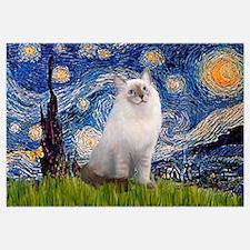 Starry Night Ragdoll Wall Art