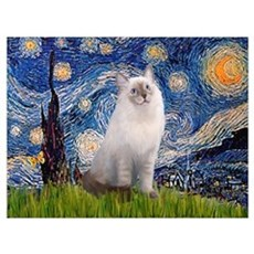 Starry Night Ragdoll Wall Art Canvas Art
