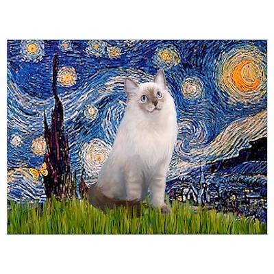Starry Night Ragdoll Wall Art Poster