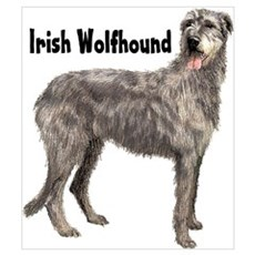 Irish Wolfhound Wall Art Framed Print