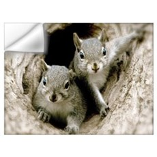 Baby Squirrels Wall Art Wall Decal