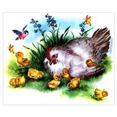 Mother Hen Yellow Chicks Wall Art Poster