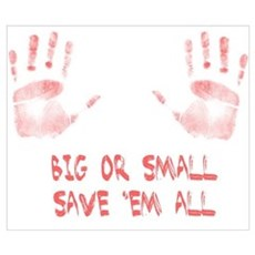 Big or Small Wall Art Poster