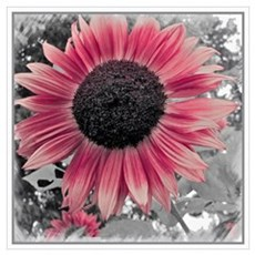 Sunflower Small Floral Poster Poster