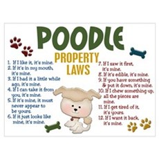 Poodle Property Laws 4 Wall Art Poster
