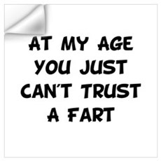 Trust Fart Wall Art Wall Decal