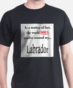 LabWorld T-Shirt