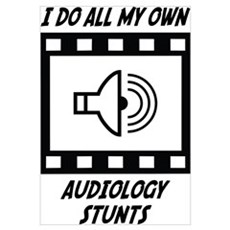 Audiology Stunts Wall Art Canvas Art
