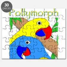 The Polymorphic Puzzle