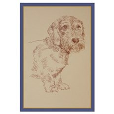 Wirehaired Dachshund Dog Art Wall Art Poster