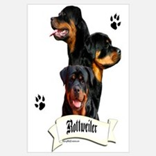 Rottie 4 Wall Art