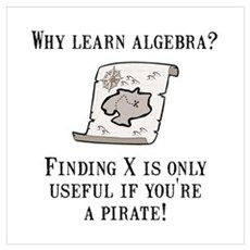 Algebra Pirate Wall Art Poster