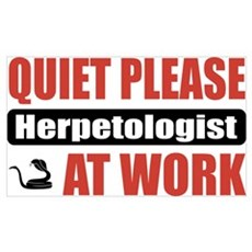 Herpetologist Work Wall Art Poster