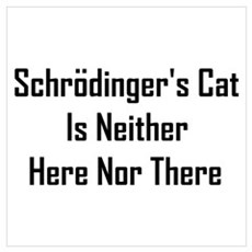 Schrodinger's Cat Is Neither Wall Art Framed Print