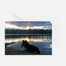Color Sheltie Sunset Greeting Cards (Pk of 20)