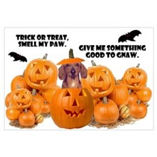 Trick Or Treat (Dachshund) Wall Art Canvas Art