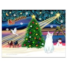 Xmas Magic / White Cat Wall Art Canvas Art