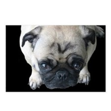 Pretty Please! Pug Postcards (Package of 8)