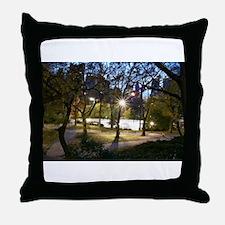 Central Park at Dusk Throw Pillow