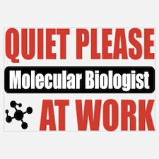 Molecular Biologist Work Wall Art