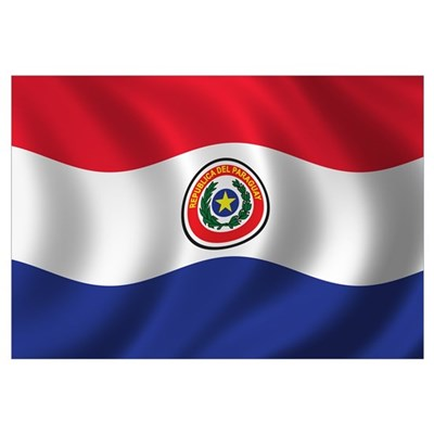 Flag of Paraguay Wall Art Canvas Art