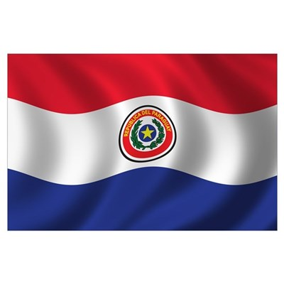 Flag of Paraguay Wall Art Poster