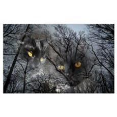 Enchanted forest 1 Wall Art Canvas Art