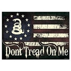 DTOM - Snake Flag Wall Art Poster
