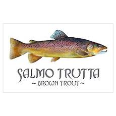 Salmo Trutta - Brown Trout Wall Art Poster