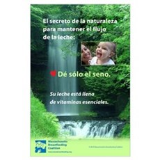 Spanish- Nature's secret: Give only the breast Poster