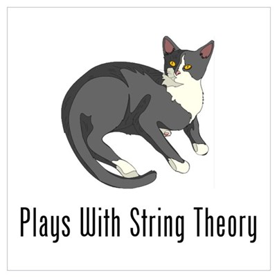 Plays With String Theory Wall Art Poster