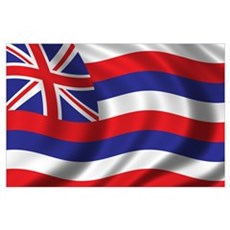Flag of Hawaii Wall Art Poster