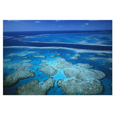 Deep channel separating Hardy Reef from Hook Reef, Poster