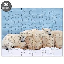 Polar Bear Puzzle