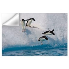 Adelie Penguin group jumping and diving off iceber Wall Decal