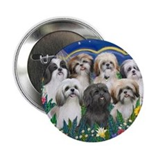 "7 Shih Tzu Cuties 2.25"" Button"