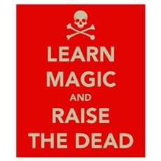 Learn Magic.... Wall Art Poster