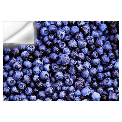 Bilberry (Vaccinium myrtillus) close up of harvest Wall Decal