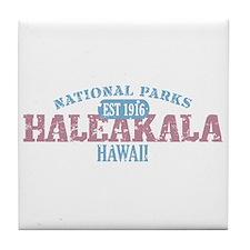 Haleakala National Park HI Tile Coaster