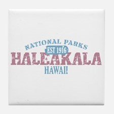 Haleakala National Park HI Tile Coaster