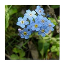 Forget-Me-Not #01 Tile Coaster