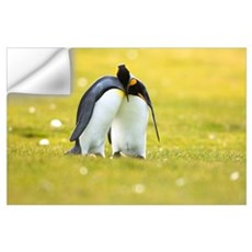 King Penguin couple courting, Volunteer Point, Eas Wall Decal