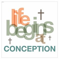 Life Begins At Conception Wall Art Poster
