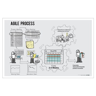 Small Agile Process Poster (Female) Poster