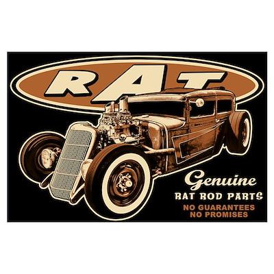 RAT - Spike Wall Art Poster